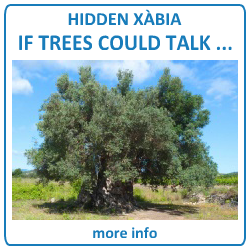 javeamigos.com | HIDDEN X�BIA - If Trees Could Talk